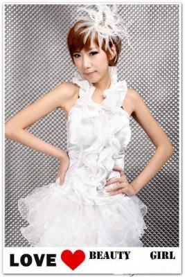 デラックス スクール プリンセスドレス イブニングドレス コスチューム コスプレ衣装
