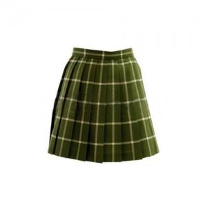 私立彩南高校女子制服 スカート ToLOVEる衣装