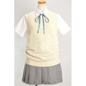 けいおん!桜が丘高等学校 夏服コスプレ衣装
