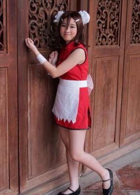 バカとテストと召喚獣 劇場版 木下秀吉  短いチヤイナドレス メイドコスプレ 赤色 緑色