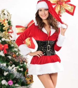 クリスマス衣装 サンタコスプレ Ladies コスチューム